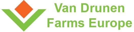 vdfeurope_logo_hq_green