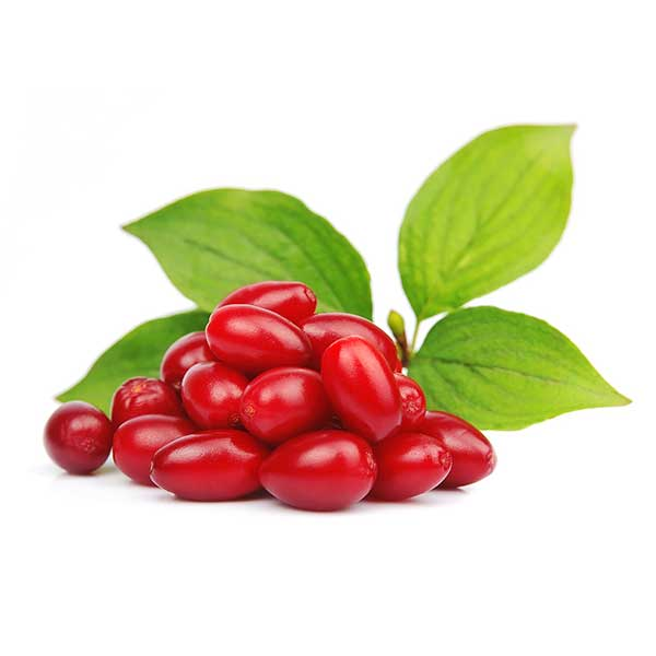 vdfe-products-cornelian-cherry